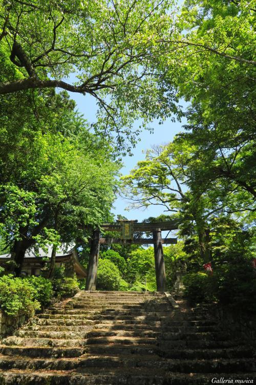 英彦山神宮2