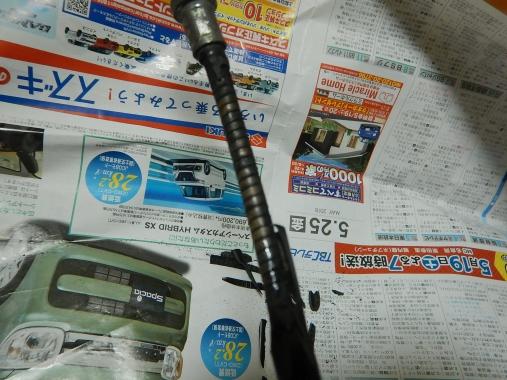 DSCN4301.jpg