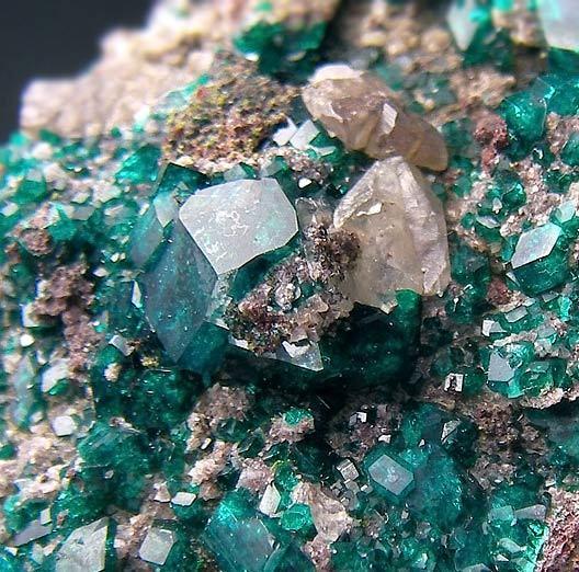 No.1111 翠銅鉱 Dioptase