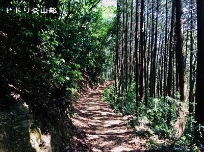 hitoriyama003.jpg