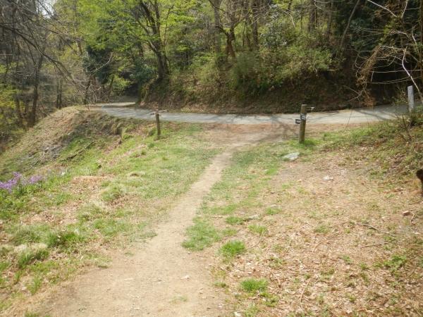 宝登山 055