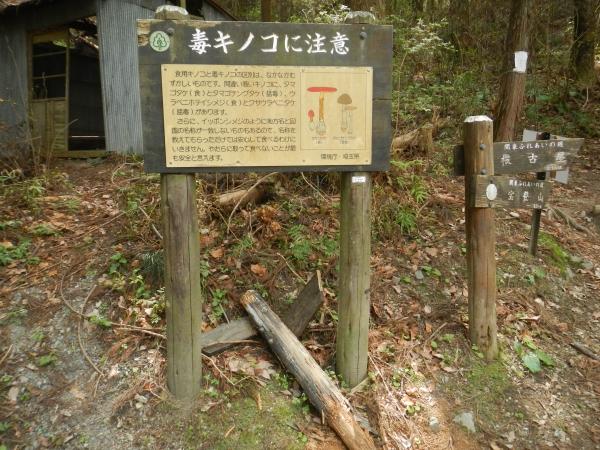 宝登山 059