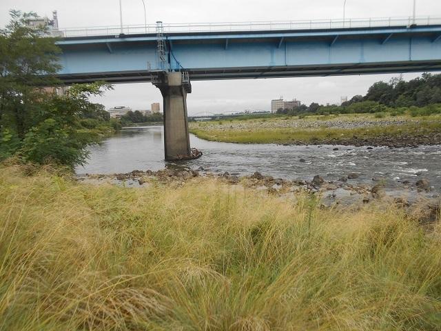 20180902中央大橋橋脚DSCN4981