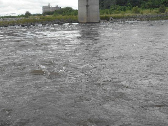 20180911中央大橋上流の荒瀬DSCN5019.jpg