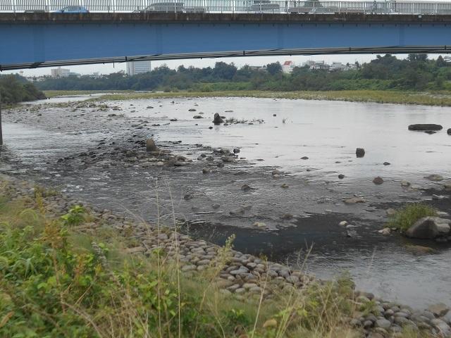 20180914大渡橋下DSCN5033.jpg