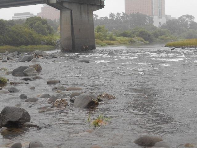 20180921中央大橋橋脚DSCN5066.jpg