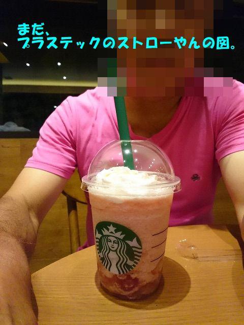 DSC_0931.jpg