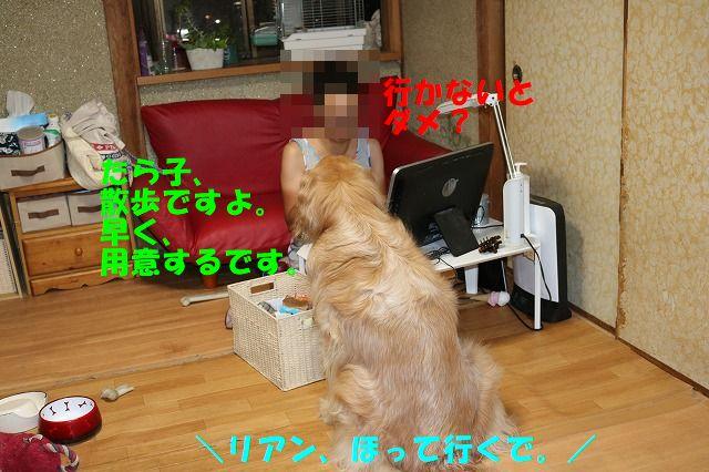 IMG_2865.jpg
