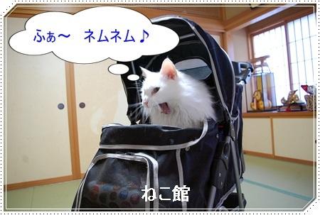 blog7_20180510154502c78.jpg