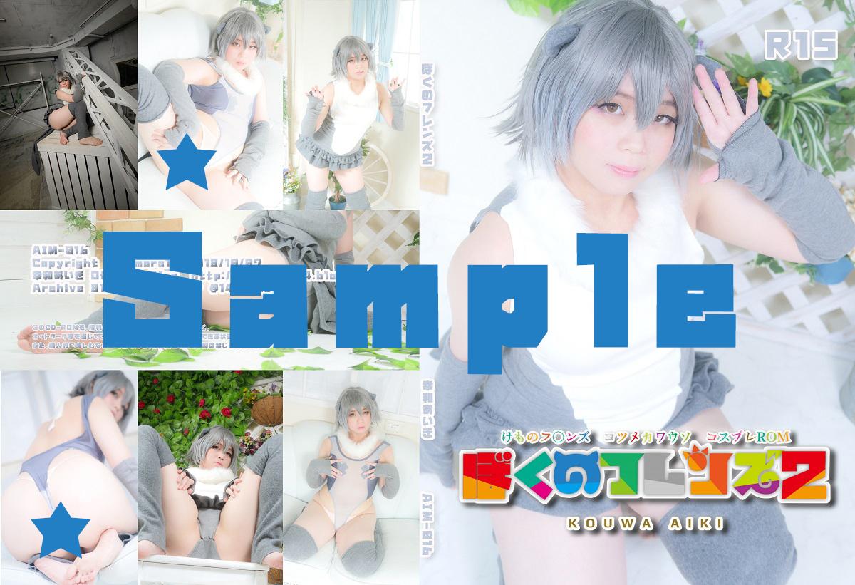 AIM-016_sample.jpg