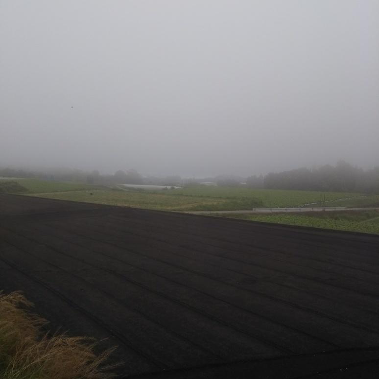 Mist 20180507