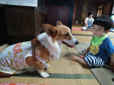 20180717ヨガとカレー6 こうちゃんとモナちゃん