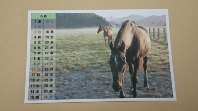 ⑥2018 カレンダー6月(ブログ用)