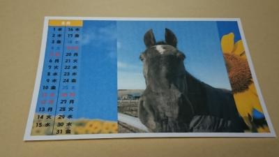 ⑧2018 カレンダー8月(ブログ用)