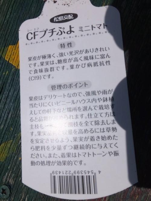 DSCF0583_1_20180429135325e07.jpg