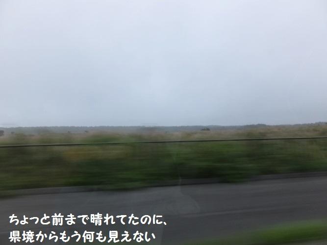 DSCF4153_1.jpg