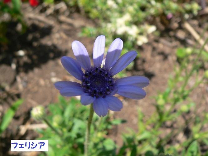 P1390148_1.jpg