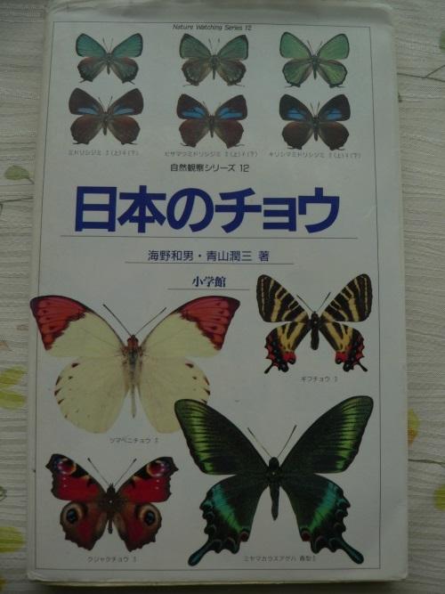 P1390202_1.jpg