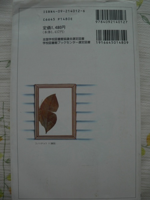 P1390203_1.jpg
