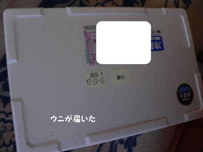 P1390824_1.jpg
