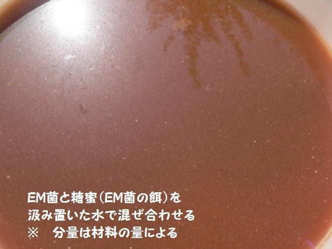 P1400004_1.jpg