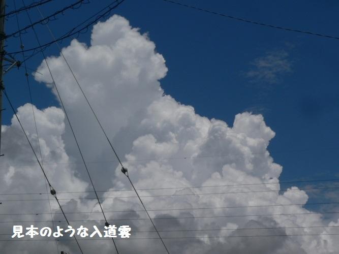 P1400527_1.jpg