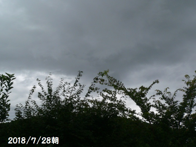 P1400736_1.jpg