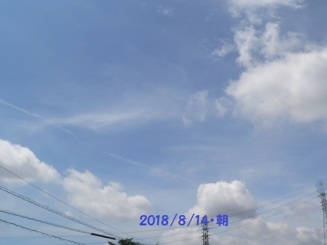 P1410074_1.jpg
