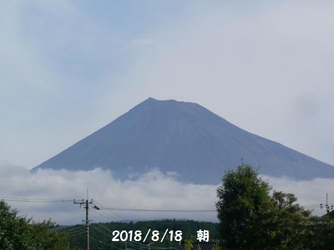 P1410137_1.jpg