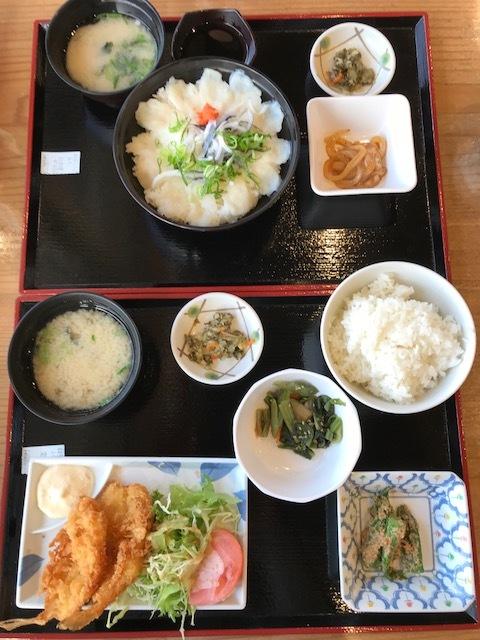 blog houhoku mitinoeki hugu0326_1322