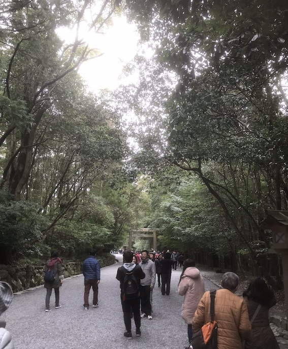 008 参道3