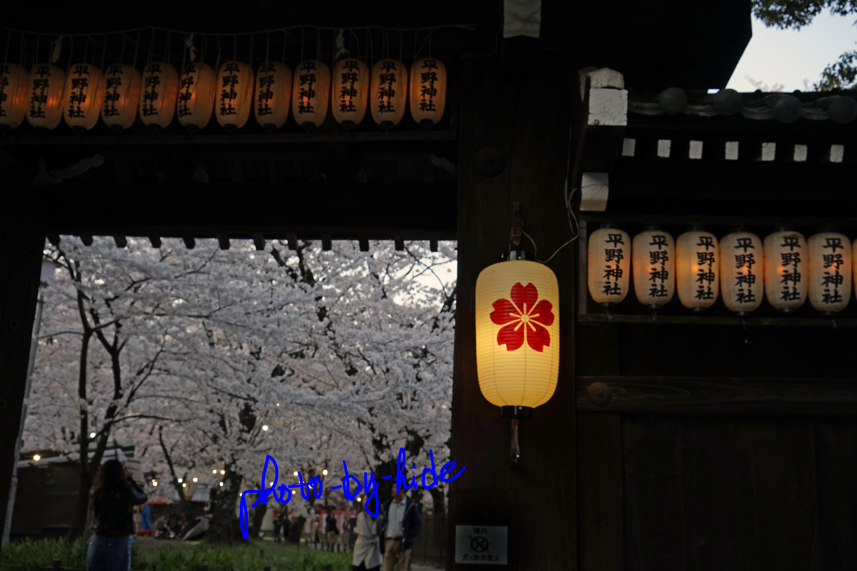 平野神社8