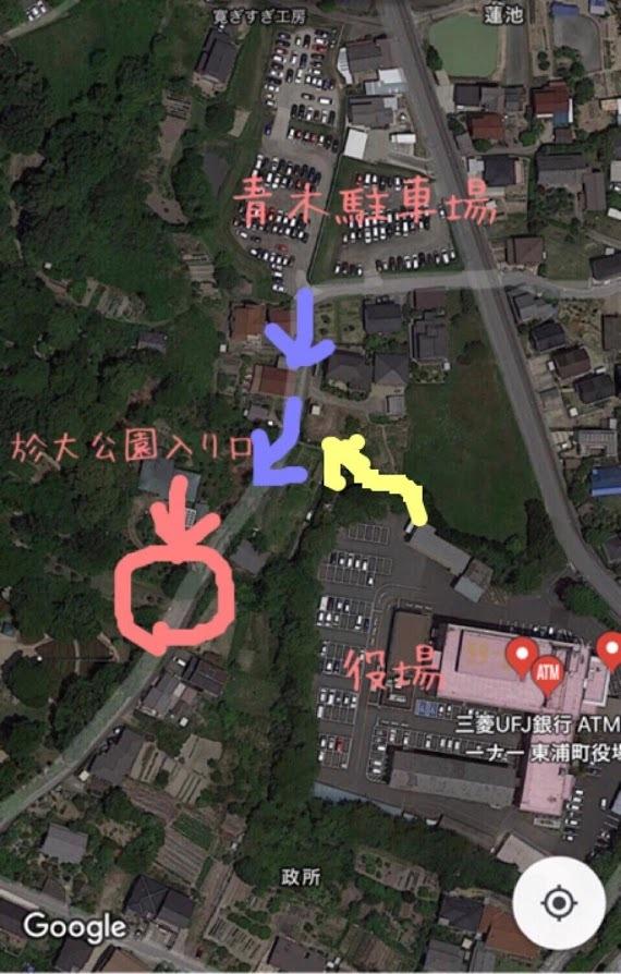 駐車場から会場の於大公園までの徒歩経路