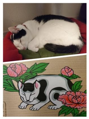 眠り猫ほくろさん