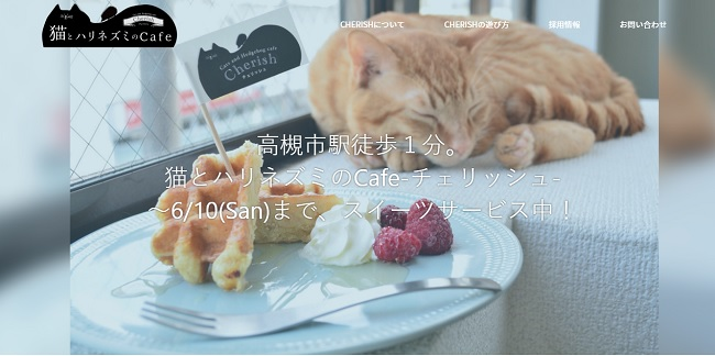 猫とハリネズミのカフェ チェリッシュ20180605