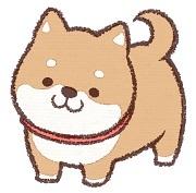 0611犬