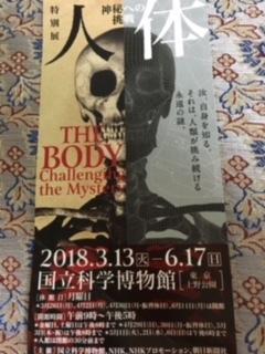「人体」チケット