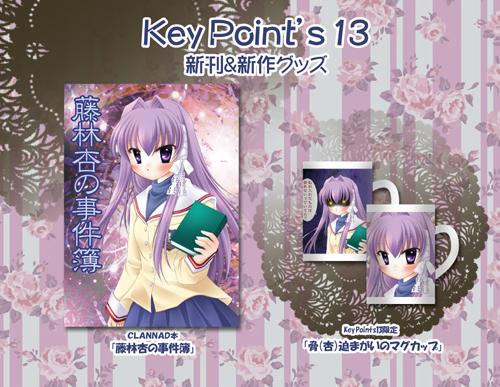 keypoints13sinkan