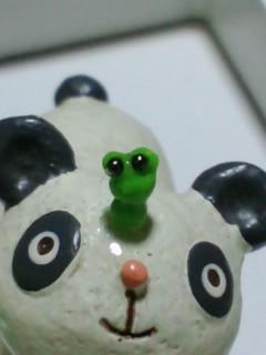 ミニミニ蛙 ライドオン!