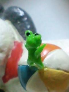 ミニミニ蛙 玉乗りアップ