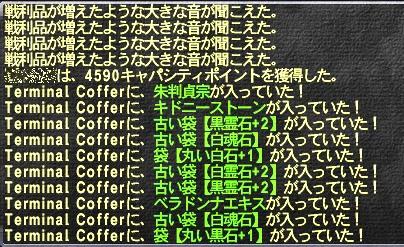 toro_02.jpg
