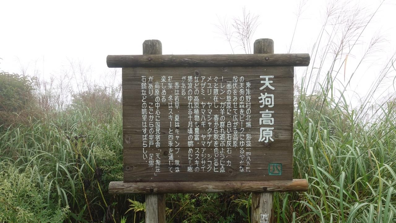 0906四国カルスト36.jpg