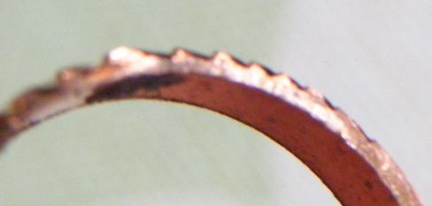 月桂樹の側面バリ (1)