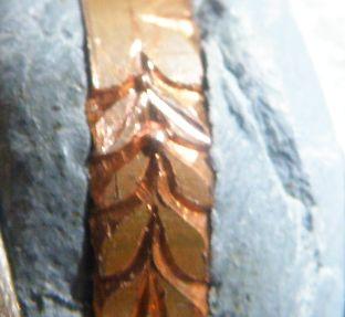 月桂樹を彫る後編 飾り (5)
