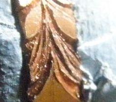 月桂樹を彫る後編 飾り (8)
