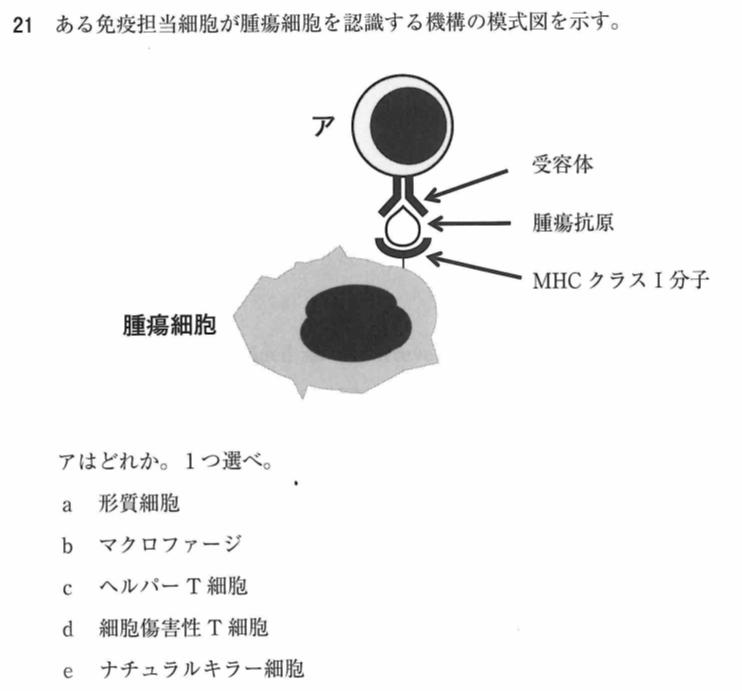 111a21免疫