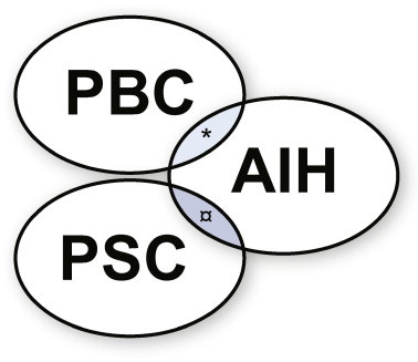 Relationship-between-the-clinical-expressions-of-PBC-PSC-and-AIH-Depending-upon.png
