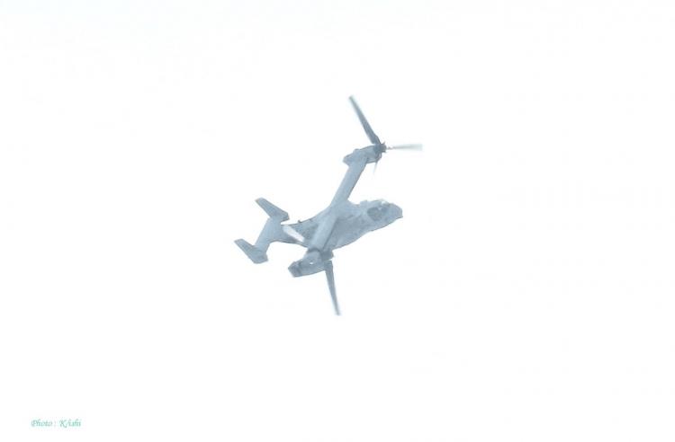 C-2194.jpg