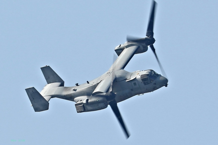 C-2196.jpg