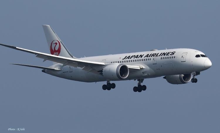 C-2256.jpg